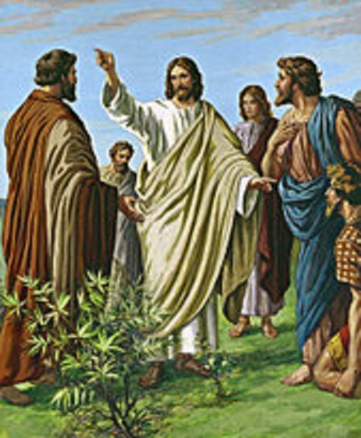 """jesus and the kingdom of god according to the gospel of thomas What is the kingdom of god matthew and luke likewise record that jesus' message was the """"gospel"""" or we prepare for the kingdom by living according to."""