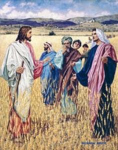 1 SABBATH pppas0345